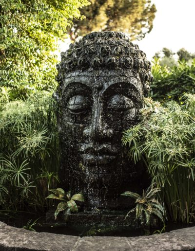 buddha-smile-fontana